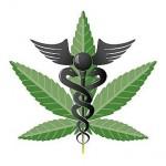 Médicos poderão prescrever derivado da maconha no país
