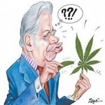 Globo acende o debate até a última ponta – porque eles podem falar sobre a erva sem tomar borrachada
