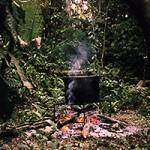 Pesquisas testam potencial benefício da ayahuasca contra depressão e dependência