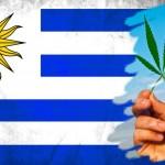 Uruguai começa em julho a vender legalmente maconha nas farmácias