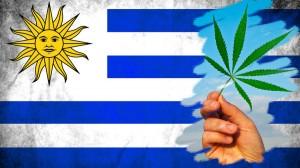 Depois-da-legalização-da-maconha-Uruguai-vive-clima-de-tensão-política