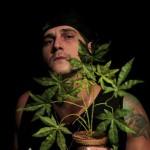 DDD (Dica Do DAR) – Avisa pra Anvisa que é medicinal: nova música de Seiva Roxa