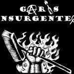 caros insurgentes