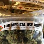 """Uso medicinal da cannabis não é """"invenção de maconheiros"""""""