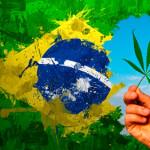 Comércio formal de maconha movimentaria R$ 5,7 bilhões no Brasil