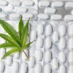 marijuana leaf on top of medical pills
